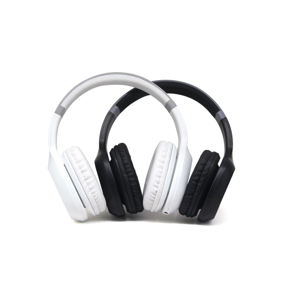 HP1020 Headphone